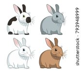 rabbits vector illustration on... | Shutterstock .eps vector #793948999