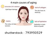 causes of aging  vector... | Shutterstock .eps vector #793950529