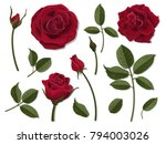 a set of flower parts.... | Shutterstock .eps vector #794003026