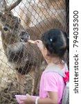 kid feeding animal | Shutterstock . vector #794035300
