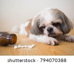 Sick Dog   White Medicine Pill...