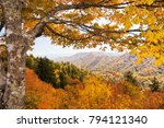 Landscape view with autumn foilage, in the Great Smoky Mountains National Park.