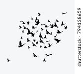 Silhouette Of A Flock Of Birds. ...