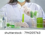 green herbal medicine research... | Shutterstock . vector #794205763