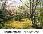 beautiful park in kyoto  japan... | Shutterstock . vector #794224090