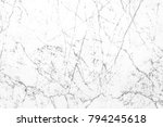 white marble background texture ... | Shutterstock . vector #794245618