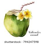 watercolor coconut with... | Shutterstock . vector #794247598