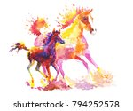 Stock photo a horse with a stallion drawn in watercolor freely gallops 794252578
