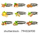 nuts logo set. vector labels... | Shutterstock .eps vector #794326930