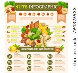 vector infographic with nuts... | Shutterstock .eps vector #794326933