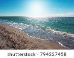 caspersen beach south venice | Shutterstock . vector #794327458