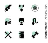 anatomy icons. vector... | Shutterstock .eps vector #794343754