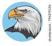 eagle head illustration | Shutterstock .eps vector #794379154