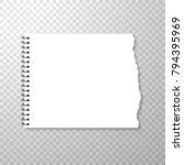 torn piece of horizontal... | Shutterstock .eps vector #794395969