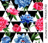 wildflower red and blue peonies ... | Shutterstock . vector #794414740