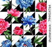 wildflower red and blue peonies ... | Shutterstock . vector #794414764