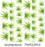 marijuana leaves seamless... | Shutterstock .eps vector #794513914