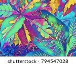 digital illustration   colorful ... | Shutterstock . vector #794547028