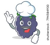 chef blackberry character... | Shutterstock .eps vector #794584930