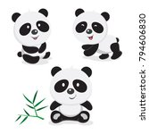 cute panda bear. vector... | Shutterstock .eps vector #794606830