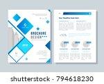annual report  broshure  flyer  ... | Shutterstock .eps vector #794618230