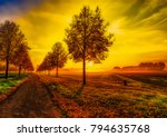 fine art colorful scenic... | Shutterstock . vector #794635768
