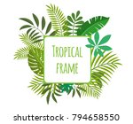 square tropical frame  template ... | Shutterstock .eps vector #794658550