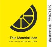 lemon slice bright yellow... | Shutterstock .eps vector #794676940
