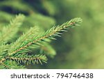 abstract background from... | Shutterstock . vector #794746438