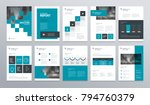 Stock vector business company profile annual report brochure flyer presentations magazine and book layout 794760379