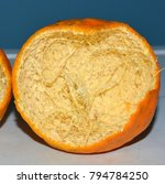 Small photo of A closeup shot of a cut-section of an Orange fruit Peel showing the fibrous pith (mesocarp)