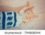 Stock photo little red kitten the kitten lies on the fluffy carpet at home little kitten sleeps close up of 794808544