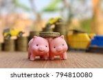 miniature pigs help carry coins ... | Shutterstock . vector #794810080