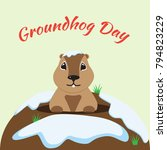 groundhog day card | Shutterstock .eps vector #794823229