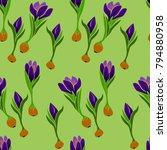 seamless pattern of crocus... | Shutterstock .eps vector #794880958