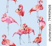 flamingo illustrations pattern | Shutterstock . vector #794909608
