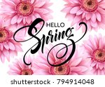 gerbera flower background and... | Shutterstock .eps vector #794914048