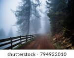 mysterious path. mysterious... | Shutterstock . vector #794922010