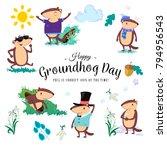 happy groundhog day set  cute... | Shutterstock .eps vector #794956543