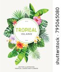 tropical flyer with palm leaves ... | Shutterstock .eps vector #795065080