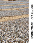 Small photo of Sun-dried fish on the beach at Negombo in Sri Lank