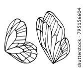 butterfly wings vector... | Shutterstock .eps vector #795156604