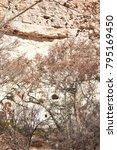 camp verde  arizona.  u.s.a. ... | Shutterstock . vector #795169450