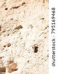 camp verde  arizona.  u.s.a. ... | Shutterstock . vector #795169468