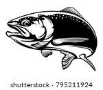 salmon fish.vintage salmon... | Shutterstock . vector #795211924