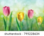vector illustration of spring... | Shutterstock .eps vector #795228634