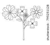 beauty floral arrangement...   Shutterstock .eps vector #795251128