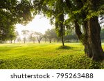 scenery green grass  with... | Shutterstock . vector #795263488