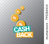 vector cash back icon isolated... | Shutterstock .eps vector #795283414