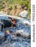 eternal natural fire flames  of ... | Shutterstock . vector #795311020